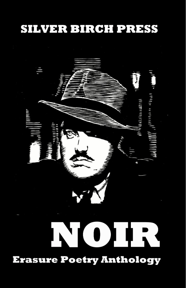noir erasure anthology cover