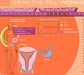 oral_contraceptives11